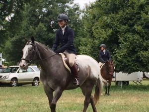 Benefits of Horse Riding Lessons